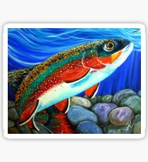 Brook Trout Fish Fly Fishing River Rock Brookie Sports  Sticker