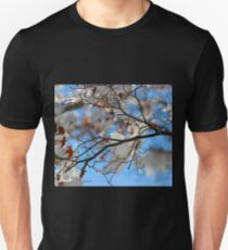 Maple After the Storm  T-Shirt