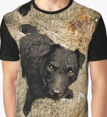 Fergus, Wire-Haired Patterdale Terrier Graphic T-Shirt