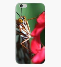 Macro Photo Passion Butterfly iPhone Case