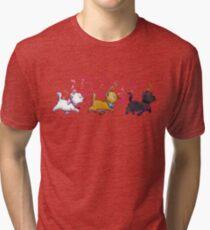 Kitten Trio Tri-blend T-Shirt