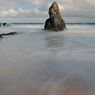 Standing Tall on Sango Bay by Maria Gaellman