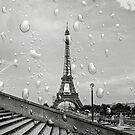 B&W Paris under Rain by BWootla