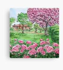 Peonies Season  Canvas Print