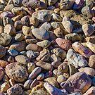 The Stones by Adam Calaitzis