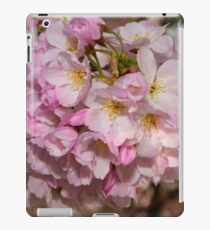 Cupertino Cherry Blossoms iPad Case/Skin