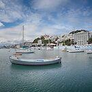 Oriental Bay Wellington by Linda Cutche