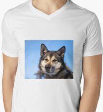 Husky Men's V-Neck T-Shirt