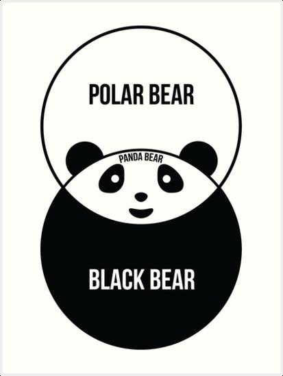Panda Bear Venn Diagram Art Prints By Offensivefun Redbubble