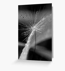 Wishes & Raindrops III Greeting Card