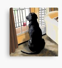 Ajax Watches the World Go By Canvas Print
