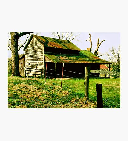 """""""Ol' Mossy Roof""""... prints and products Photographic Print"""