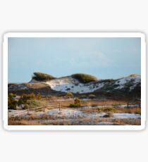 Hidden Dunes ~ Deer Lake State Park ~  Northwest Florida Sticker