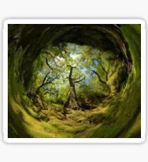 Ness Glen, Mystical Irish Wood Sticker