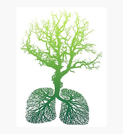 Green Lungs Photographic Print