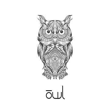 Owl by andrea955