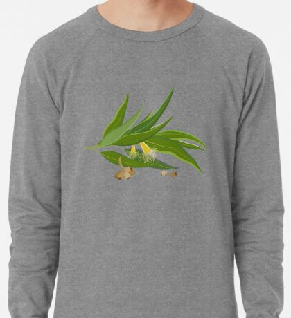 Eucalyptus twig with leaves, flowers and seeds Lightweight Sweatshirt