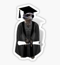 Meerkat Graduate Sticker