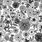Intricate B & W Flowers by Ray  of Light