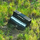 Look Out For the Piano # 2 by Penny Smith