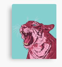 Magenta tiger Canvas Print