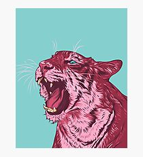 Magenta tiger Photographic Print