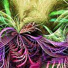 organic-delica by webgrrl