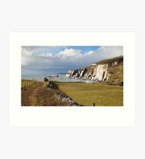 Ayrmer Cove, Devon Art Print