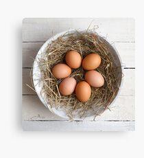 eggs in hay Canvas Print
