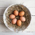eggs in hay by Dave Milnes