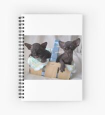 Two baby black sphynx cats - devil and angel Spiral Notebook