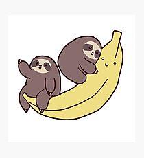 Sloths and Giant Banana Photographic Print