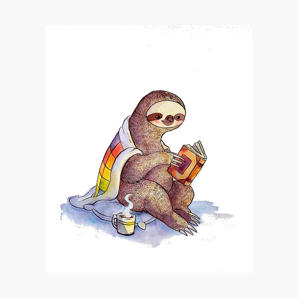 Cosy Sloth Lámina fotográfica