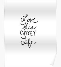 Love this Crazy Life  Poster