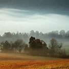 Cades Cove Morn by Gary L   Suddath
