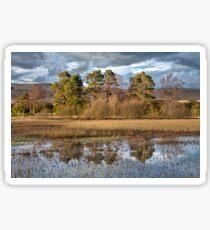 Helensburgh Reservoir Sticker