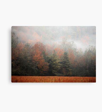 Misty Fall Morn Canvas Print