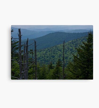 Mountain Twilight  Canvas Print