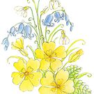 Spring flowers pencil and watercolor  by Sarah Trett