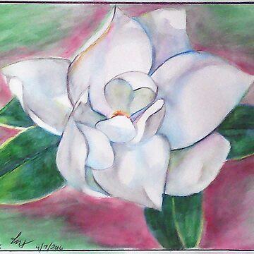 Magnolia 2 by lorgh