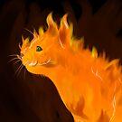 Firey Inferno Kitty Cat by jupejuperocket