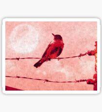 Bird on the Wire Sticker