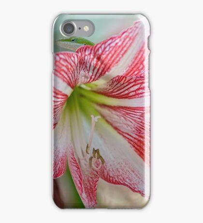 Intruder iPhone Case/Skin