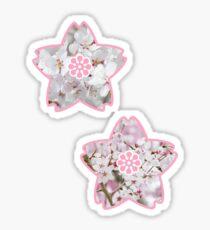 Sakura Sticker Set of 2 Sticker