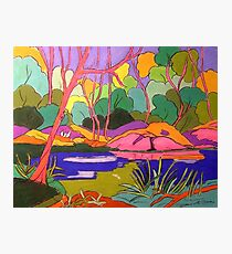Numinbah State forest Nerang River Photographic Print