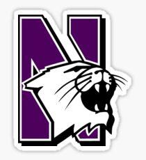 Northwestern Sticker