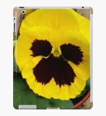 YELLOW TWO TONE PANSY iPad Case/Skin