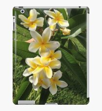 YELLOW PLUMERIA FRANGI PANGI HAWAIIAN FLOWERS iPad Case/Skin