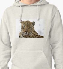 Can Leopards Wink? Pullover Hoodie