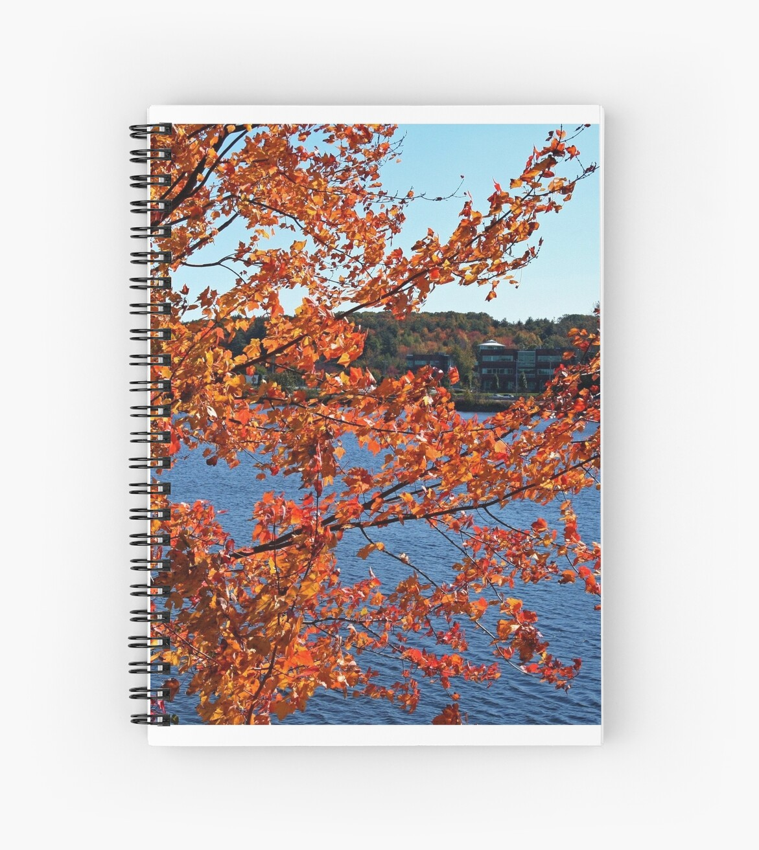 Fall at Sudbury Reservoir by renprovo